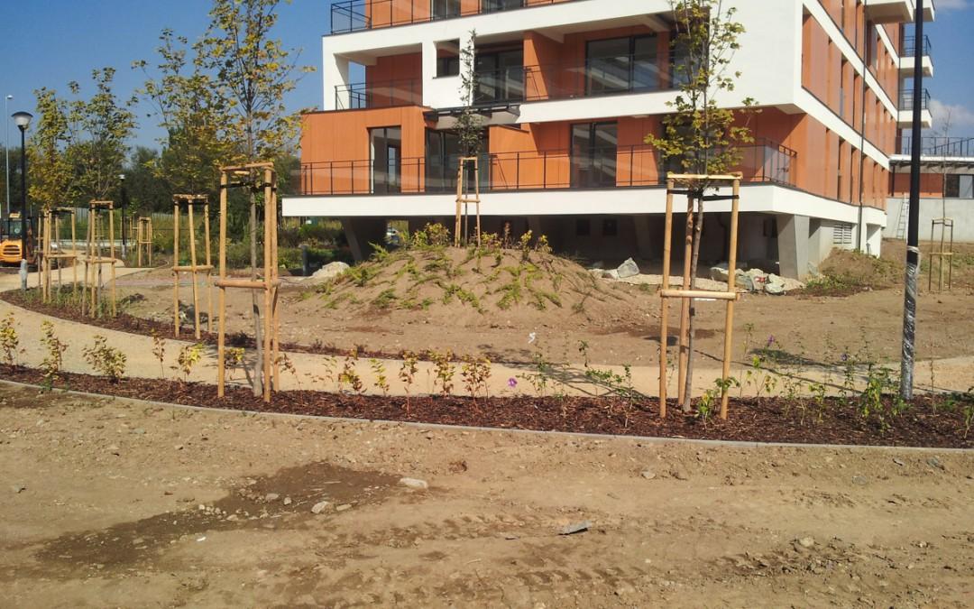 Dokončovanie prác v bytoch a úpravy vonkajšieho areálu